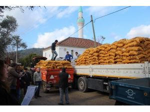 Büyükşehir'in Çiftçilere Desteği Devam Ediyor