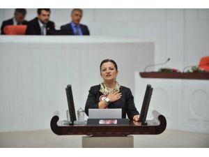 CHP'li Basmacı'nın 'Meclis Araştırma Komisyonu' Kurulması Talebi Reddedildi