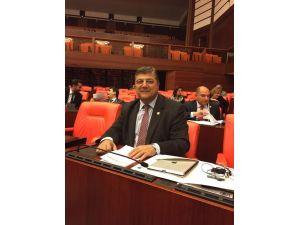 CHP Milletvekili Sındır: Hastane mi, tıp merkezi mi?