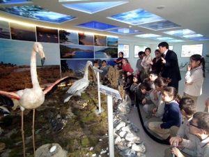 Çocuklar, Doğayı Görerek Öğreniyor