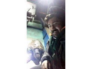Marmara'da Balıkçıları Şok Eden Sürpriz....