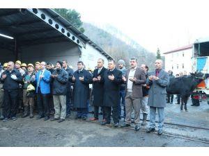 TTK Üzülmez Müessesesi'nde Pano Üretim Yeni Ayağı Dualarla Açıldı