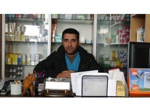 Veterinerden 'Bilinçsiz İlaç Kullanımı' Uyarısı