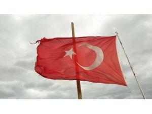 Bursa'da Şiddetli Rüzgar Ağaç Devirdi