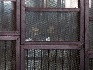 Mısır'da Biltaci'nin oğluna iki yıl hapis cezası
