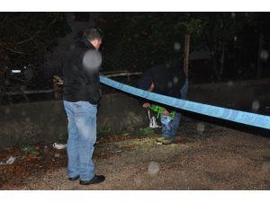 Zilin çalmasına sinirlenen yaşlı adam, oğlunun damadını vurdu