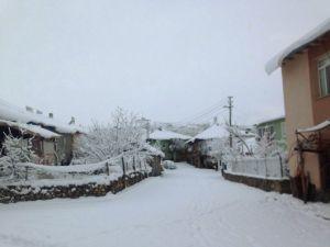 Adana'nın Kuzey İlçesinde Kar Esareti