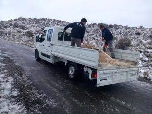 Yunusemre'de Kar Mesaisi Sürüyor