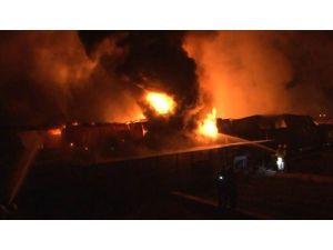 İzmir'de Soğuk Hava Deposunda Yangın Çıktı