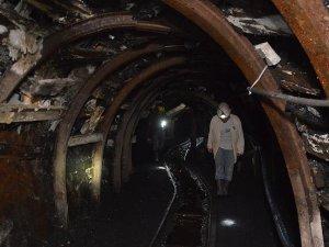 Taş kömüründen 1,3 milyar lira gelir