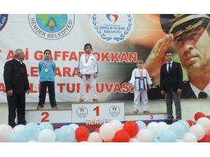 Büyükşehirli Karateciler, Gaffar OKAN Ansına Yarıştı