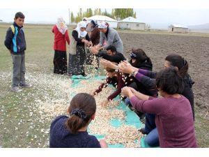 Büyükşehir Belediyesi'nden Tarımsal Kalkınmaya 6,5 Milyon TL Yatırım