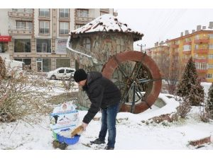 Soğuk Kış Aylarında Sokak Hayvanları Aç Kalmayacak