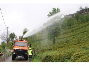 Türkçayder'den Organik Çay Tarımı Vurgusu
