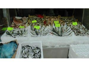 Kar Karadeniz'e Düştü, Balık Fiyatları Uçtu
