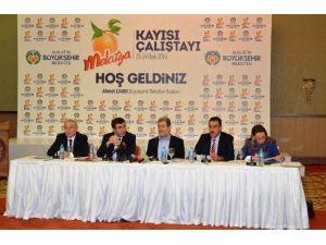 """Malatya'da """"Kayısı Çalıştayı"""" Düzenlendi"""