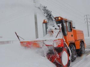 Bitlis'te Kar Yağışı Hayatı Olumsuz Etkiliyor
