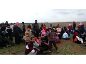 Çatışmalardan kaçan Türkmenler kendi topraklarında mülteci oldu