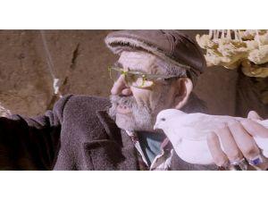 Kapadokya'da güvercinlerin ışık izi gösterisi