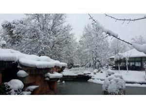 İhlas Kuzuluk Termal Otel, Her Mevsim Ayrı Güzel