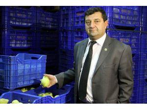 İsveçli firmalar Bursa'dan meyve sebze istiyor