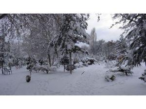 Doğanşehir'den Kar Manzaraları
