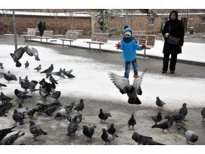 Aç Kalan Kuşları Vatandaş Besliyor