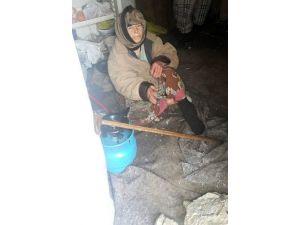 Yaşlı Kadın Soğuktan Donmak Üzereyken Kurtarıldı