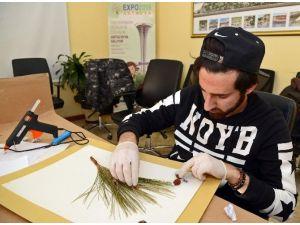 Kurutulmuş Bitki Örnekleri EXPO 2016'da Görücüye Çıkacak