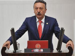 CHP Milletvekili Bayır, Çeşme'deki taş ocaklarını Meclis'e taşıdı