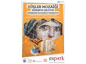 Anadolu'nun mozaikleri Eskişehir'de görücüye çıkıyor