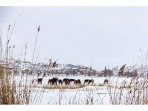 Kayseri'de Kartpostallık Fotoğraflar