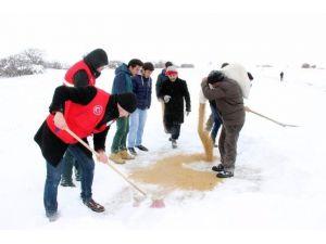 Yozgat'ta Gençler Yaban Hayvanları İçin Doğaya Yem Bıraktı