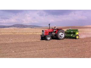 Sertifikalı tohum desteği icmalleri askıya çıkarıldı