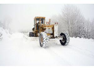 Muğla'da kardan kapanan yollar açıldı