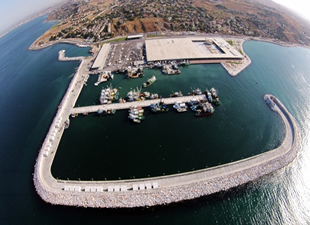Avrupa'nın en büyük balık hali İstanbul'da