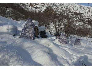 Türk Silahlı Kuvvetleri'nde kış tatbikatları