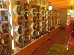 Yusufeli 'Bal Evi' hizmete açıldı