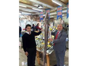 Marmara'da 2 Metrelik Dev Yılanbalığı Yakalandı
