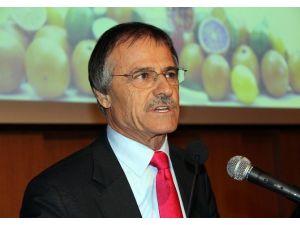 """Kavak: """"Türkiye'nin 2015 Yaş Meyve-sebze İhracatı Geliri 2,5 Milyar Dolar"""""""