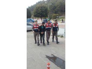 Jandarma ,Hırsızı Şüpheli Listesinden Buldu