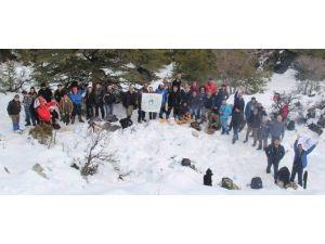 Beyşehir'de Doğaseverlerden Kar Yürüyüşü Etkinliği