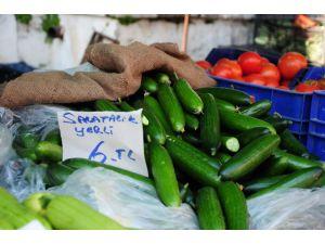 Salatalığın fiyatı pazarda 6 lirayı buldu