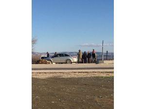 Otomobil İneklere Çarptı