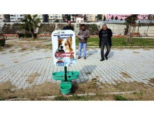 Hatay Büyükşehir'den Hayvan Dostu Beslenme Odakları