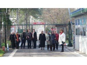 Edirne'yi Yeniden Keşfettiler