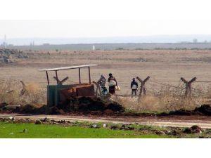 Bombardımandan kaçan Suriyeliler, Öncüpınar'da bekleniyor