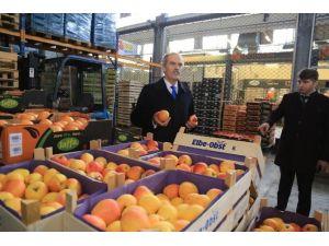 Çiftçi Büyükşehir İle Dünya Pazarlarına Açılacak