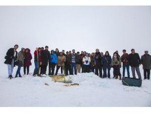 Eskimo Usulü Balık Avına Fotoğrafçı Akını