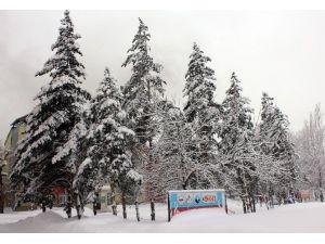 Ağrı'da 225 Köy Yolu Ulaşıma Kapandı
